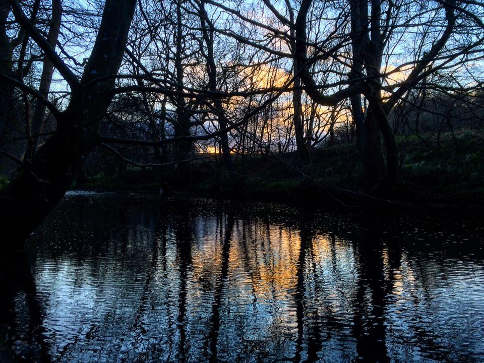 Hartburn River