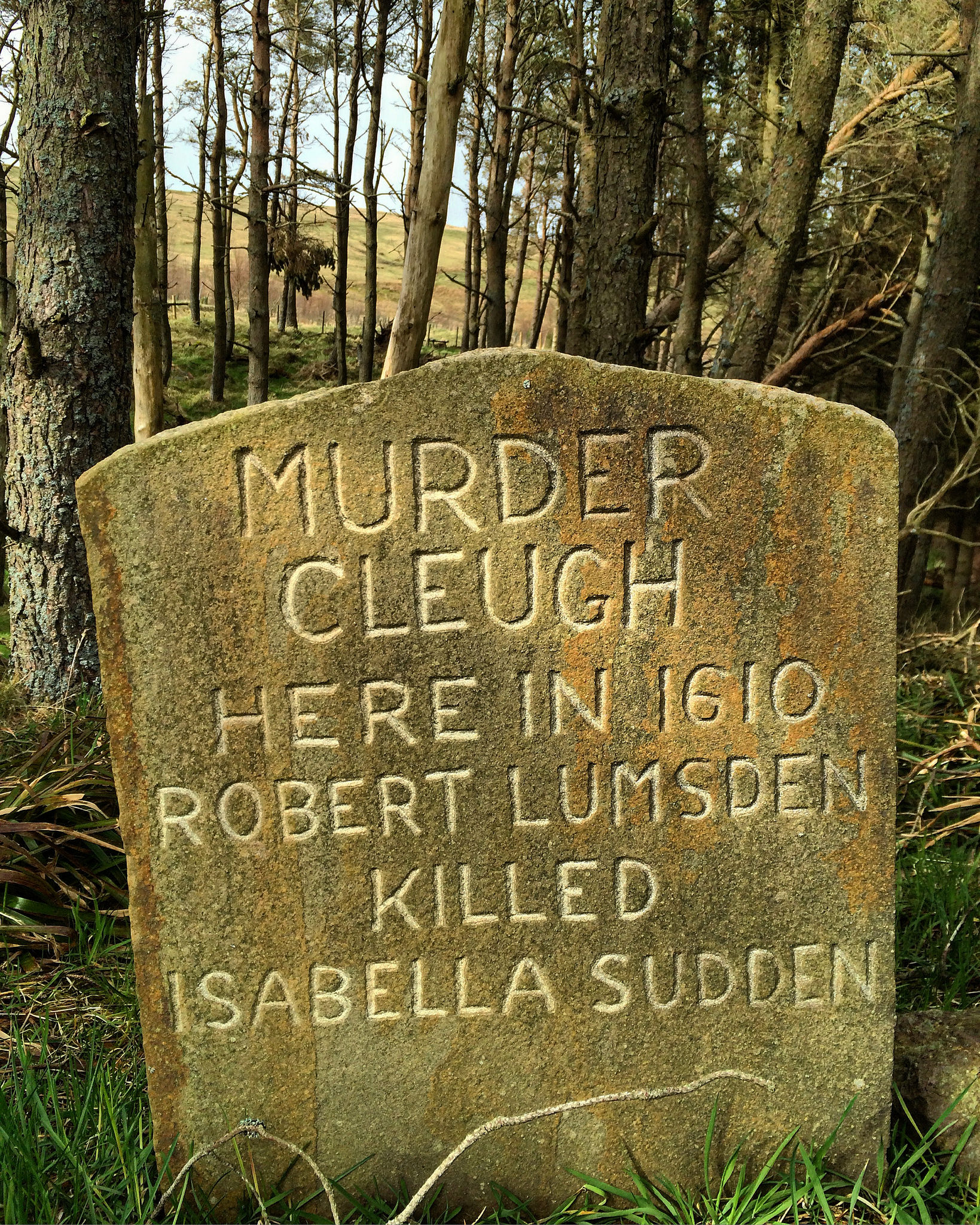 Cheviots: Murder and Intemperance